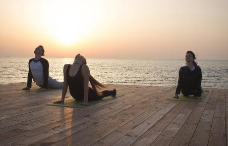 Tristyle Yoga Camp