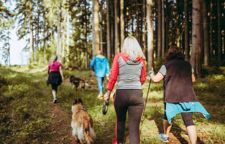 TriFit Camp – Let's get in shape!